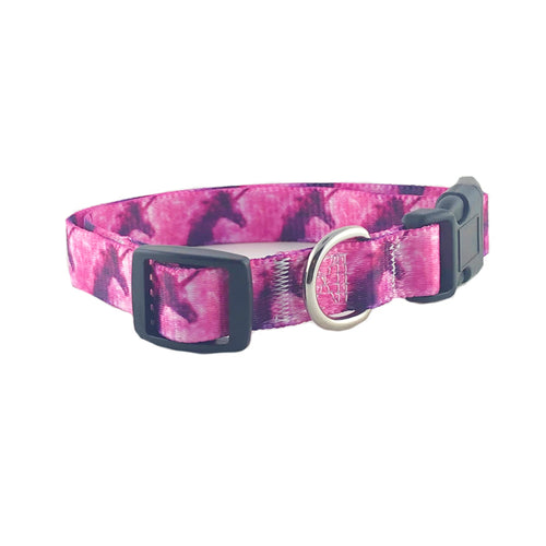 Unicorn Dog Collar and Leash