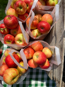 Ten Eyck Orchard Apples
