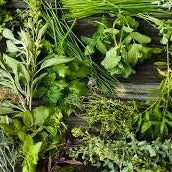 Fresh Herb Bundles, 1 bunch
