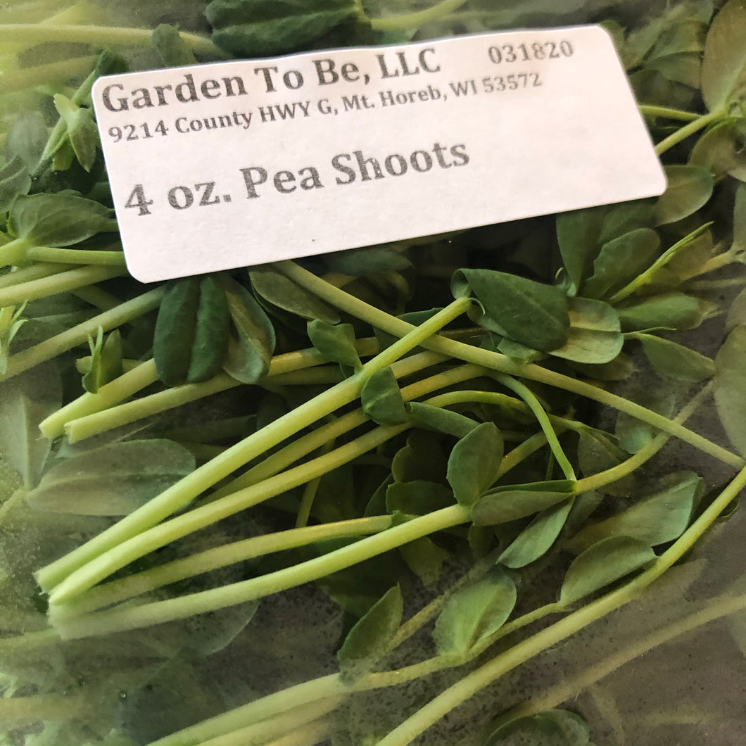 Pea Shoots, 4 oz