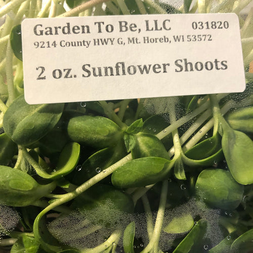 Sunflower Shoots, 2 oz