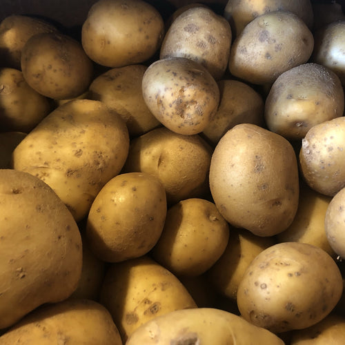 Gold Potatoes - 5 lb
