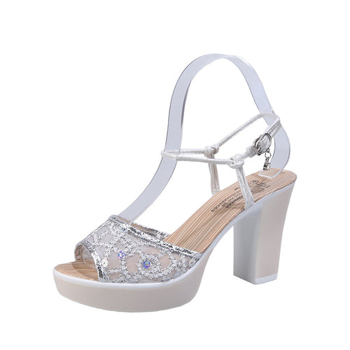 Elegant Mesh Open Toe Shoe