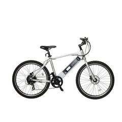 Image of American Electric GenZe 350W Sport Silver Crossbar Electric Bike E101