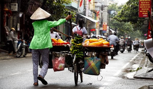 The Impact of the COVID-19 Lockdown on the Diets of Hanoi's Urban Poor