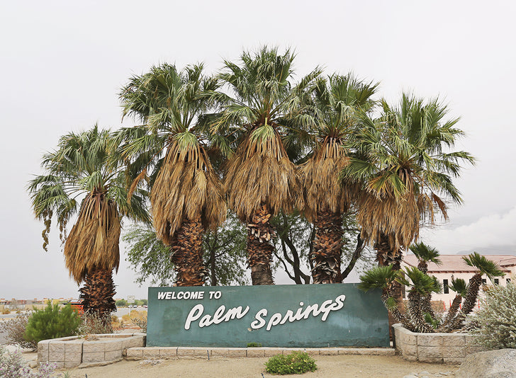 The Essential Vintage Palm Springs Travel Guide 2019