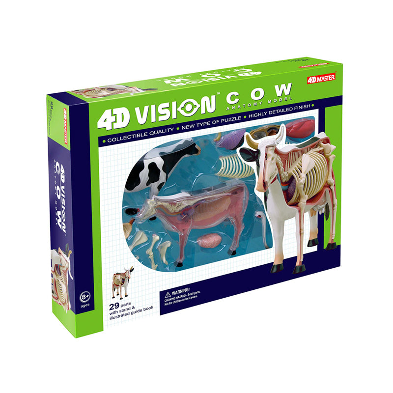 Cow Anatomy Model - Happki