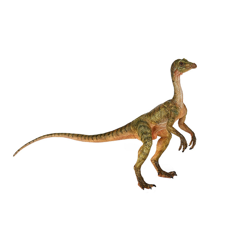 Compsognathus - Happki