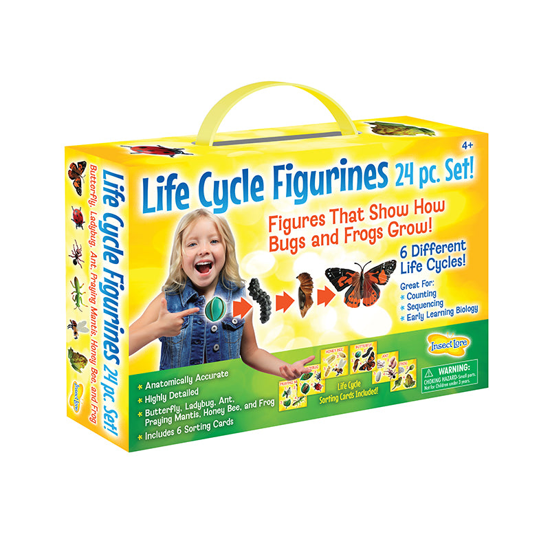 Life Cycle Figurines Set - Happki