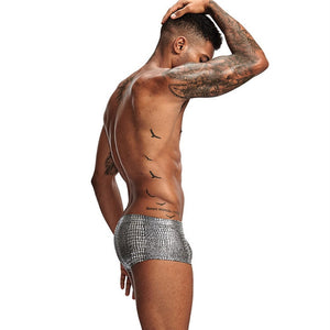 Sheen Holographic Swimsuit Hipster Trunks for men metallic silver