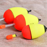 Float Detector for Fishing - fishingnvarieties.store