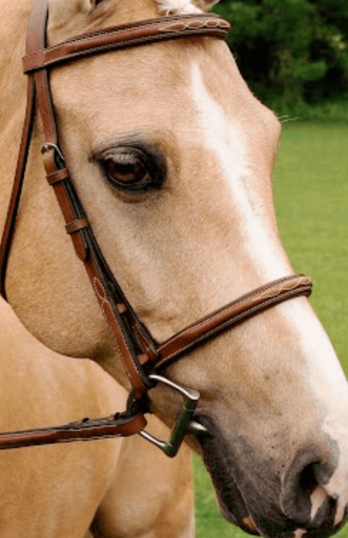 Arc De Triomphe Imperial Bridle with fancy raised reins