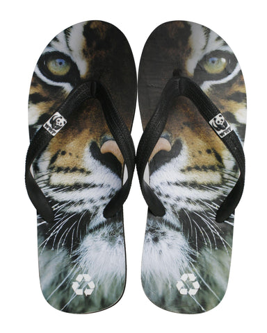 Catwalx slippers