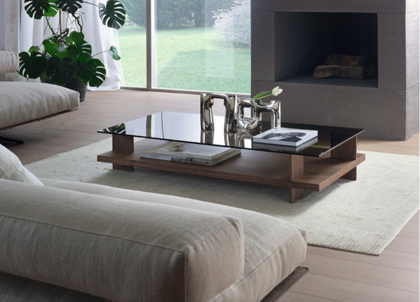 Elegant Low Coffee Table With Bronze Glass