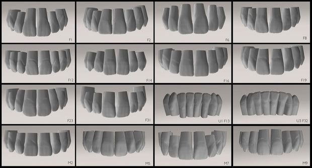 Anteriores 3D Tooth Library Package