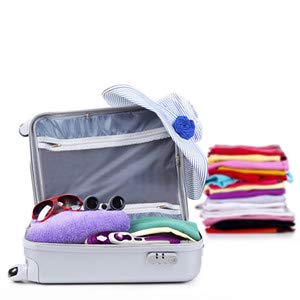 2in1 Portable Steam Iron