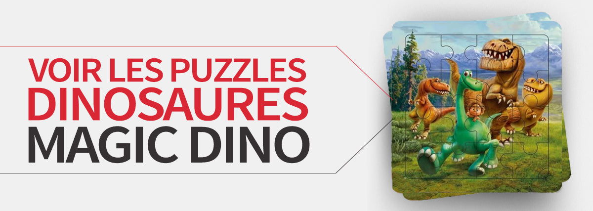 collection puzzles dinosaures