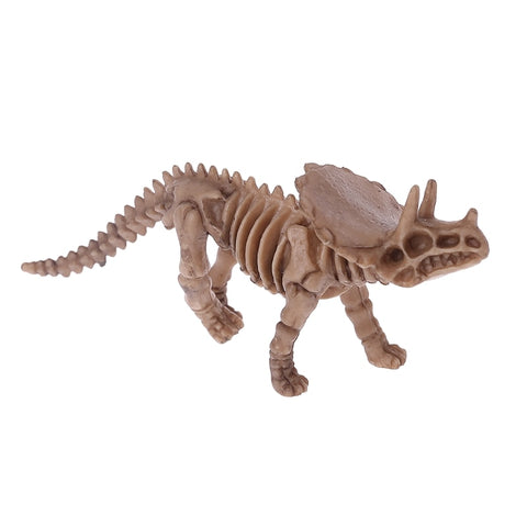 Squelette Dinosaure<br>Triceratops