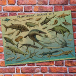 decoration dinosaure poster monstres marins