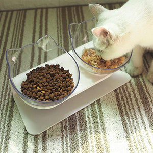 Pet Cats Transparent Bowl with Holder Anti-slip Cat Food Dish Pet Feeder Water Bowl Perfect For Cats And Small Dogs Supplies