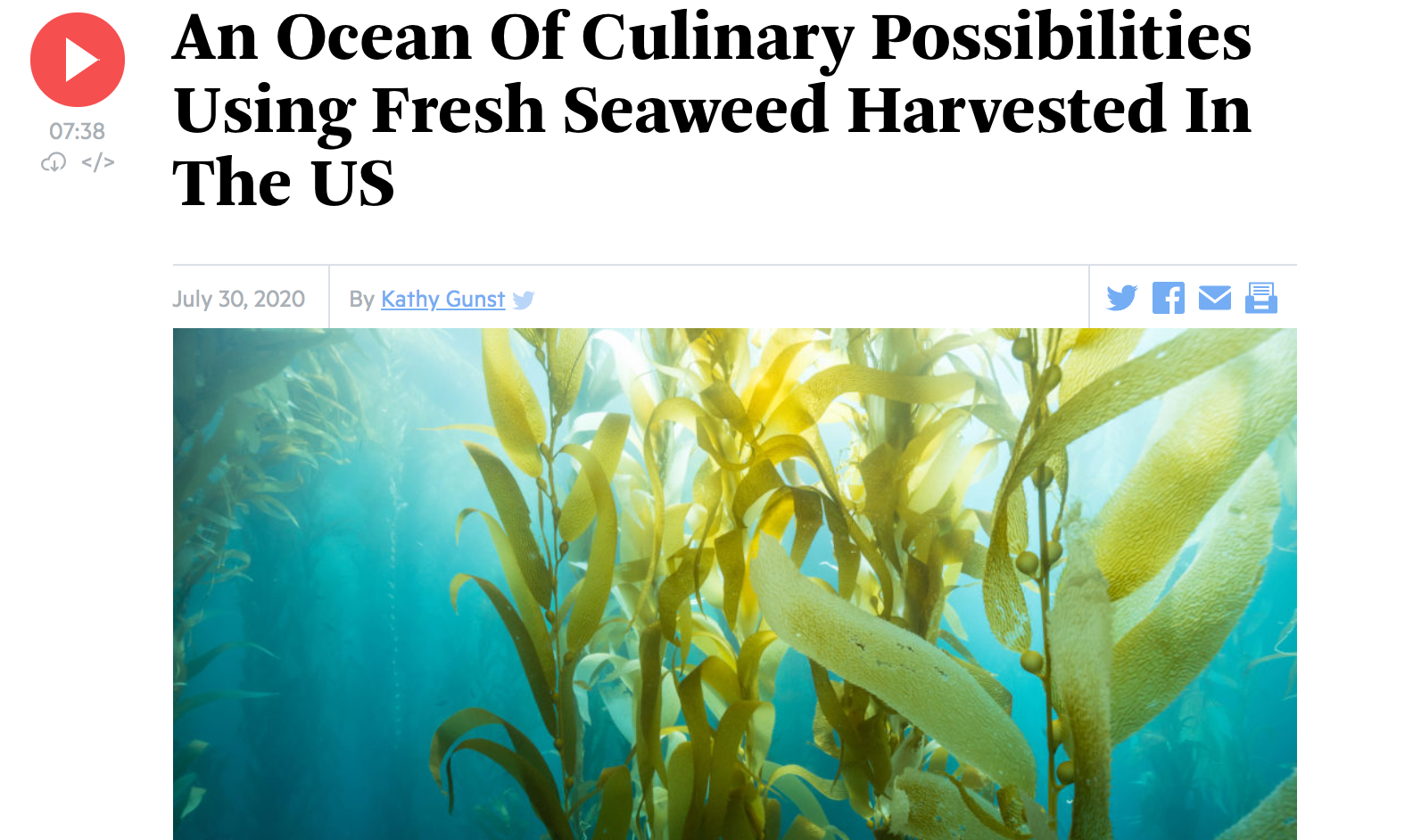 Here & Now: An Ocean Of Culinary Possibilities Using Fresh Seaweed Harvested In The US