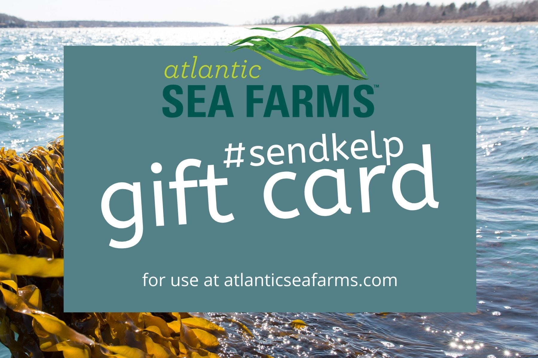 Atlantic Sea Farms Gift Card