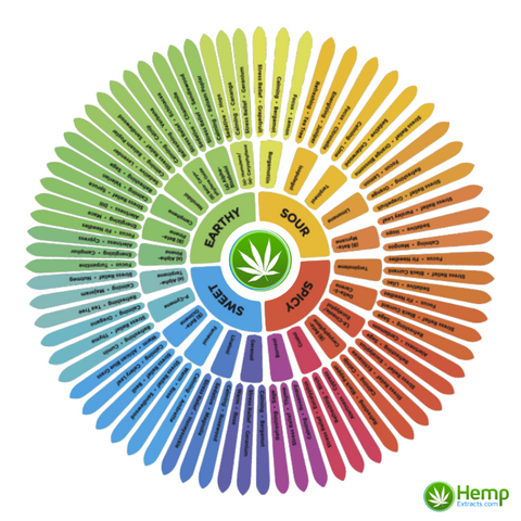 types of terpenes and their effects