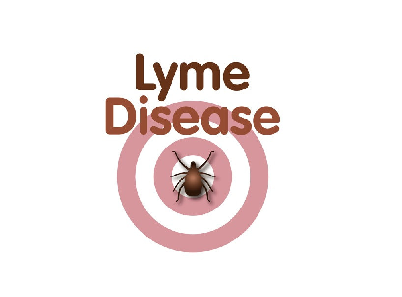 Lyme Disease is Everywhere!  How to Prevent, Detect and Treat!