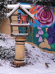 Home Made Bird House Near Trees and A Colourful Mural - Parade Handmade