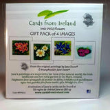 Art Cards Wild Flower Gift Pack, Four Scenes, By Jane Dunn - Parade Handmade