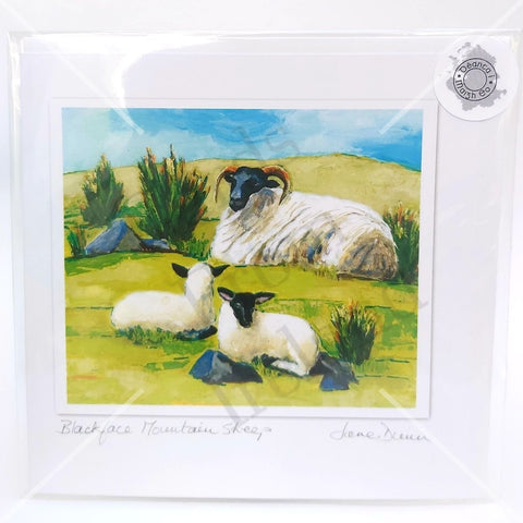 Black Face Mountain Sheep, Art Card, By Jane Dunn - Parade Handmade