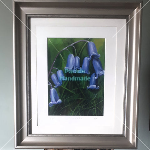 'Bluebells', Framed Limited Edition Print, By Nuala Brett-King - Parade Handmade