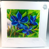 Gentian, Art Card from original, By Jane Dunn - Parade Handmade
