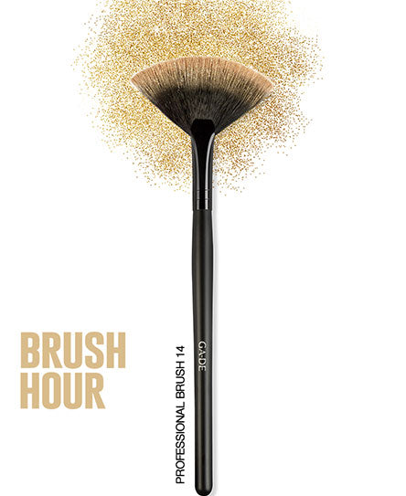HIGHLIGHTS BRUSH #14