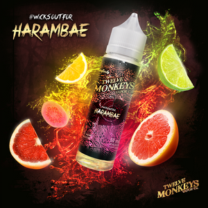 12 MONKEYS E-LIQUID HARAMBAE E-LIQUID - 60ML