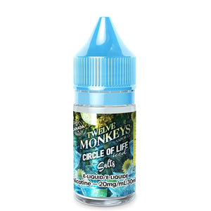 CIRCLE OF LIFE ICED BY 12 MONKEYS ICE AGE SALTS - 30ML