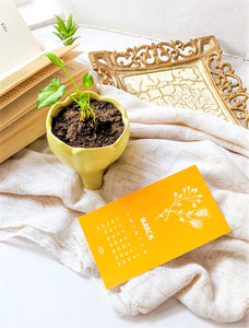 'Bookmark of the Month' - 2019 Calendar (Set of Twelve Bookmarks/Notecards)
