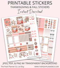 Load image into Gallery viewer, planner stickers for erin condren