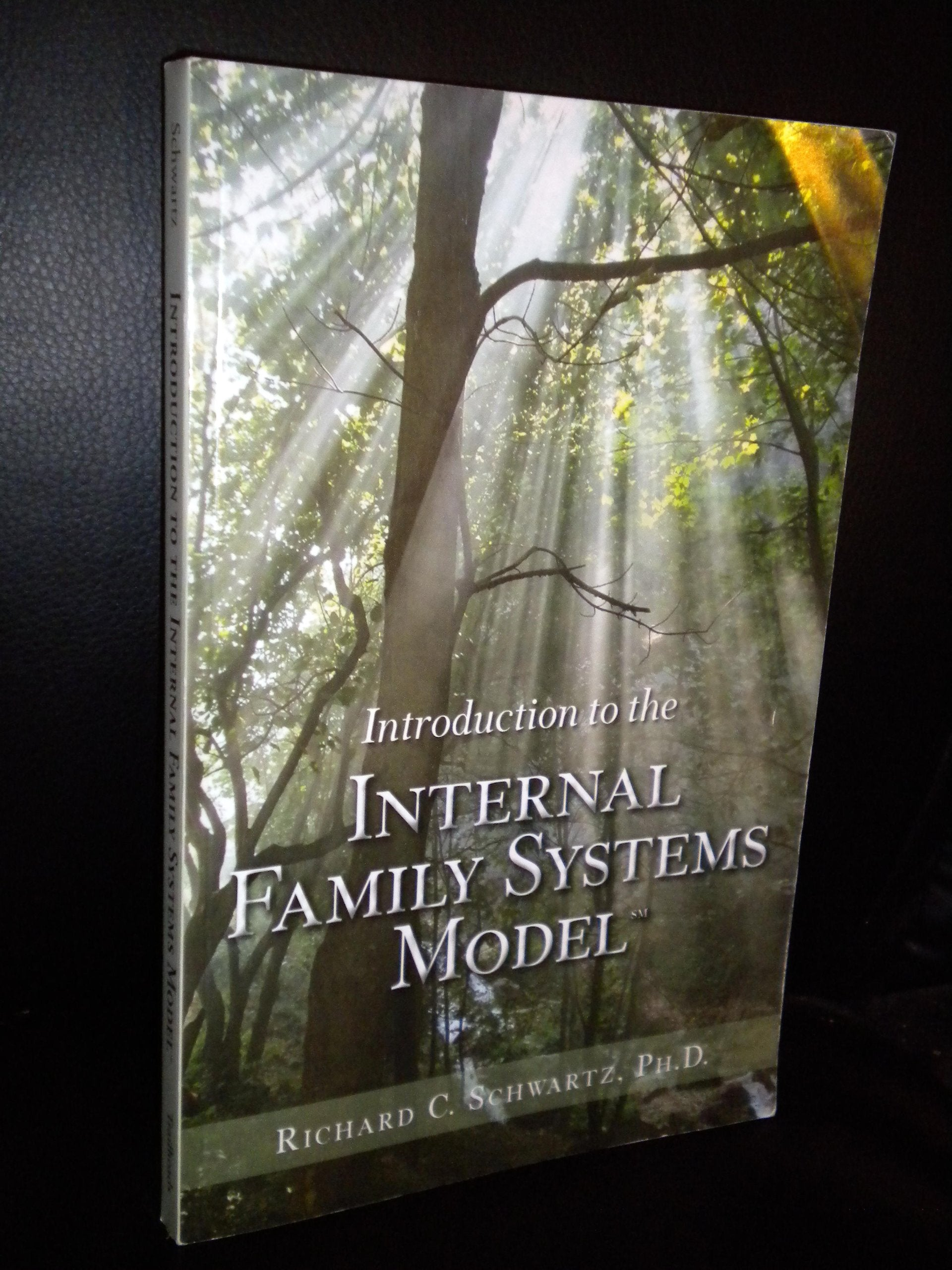 Introduction to the Internal Family Systems Model by Richard C. Schwartz