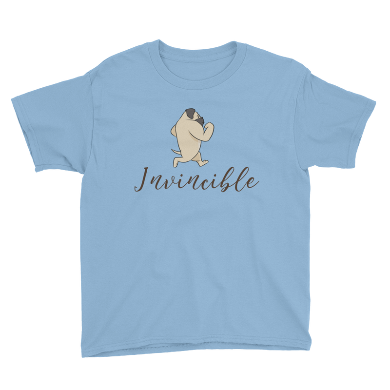 Invincible010 Anvil 990B Youth Lightweight Fashion T-Shirt with Tear Away Label