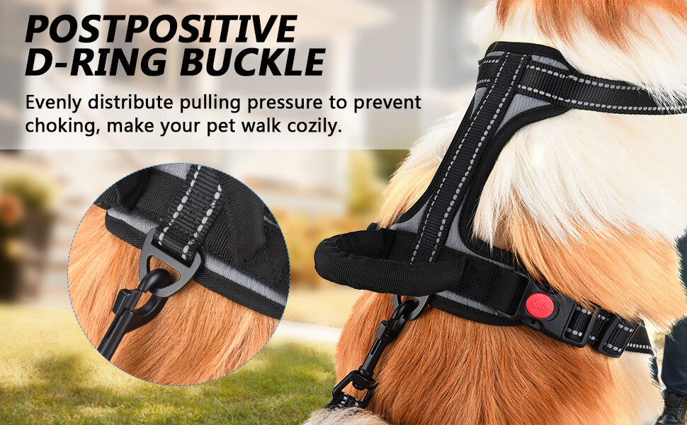 Great Pet Harness Adjustable Outdoor Dog Walking Harness
