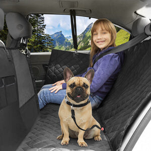 Petacc Dog Back Seat Cover Dog Car Hammock with Visible Window Enlarged Door Protector