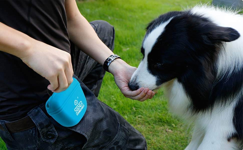 Petacc Pet Training Bag Silicone Dog Training Pouch Portable Pet Treat Pouches with Clip and Magnetic Closing Blue