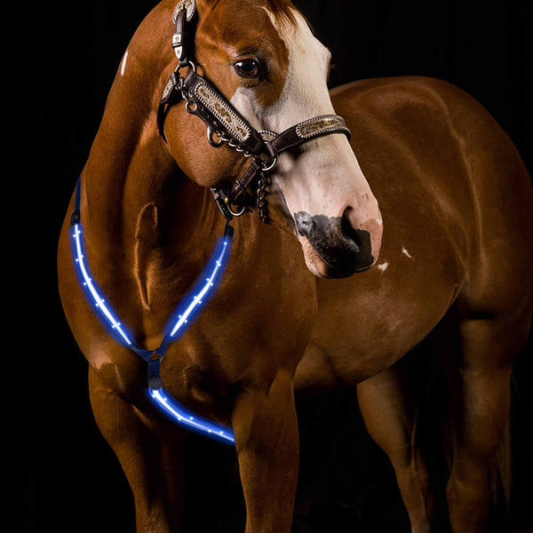 Petacc LED Horse Breastplate Collar Rechargeable Horse Breast Collars, Blue - Petacc