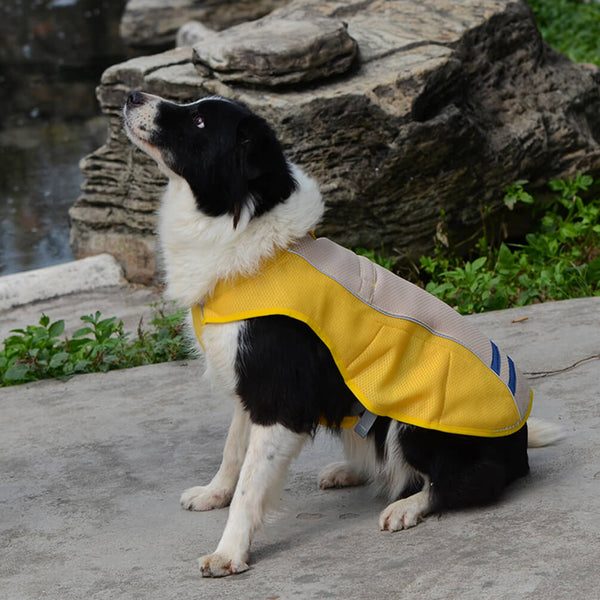 Petacc Pet Cooling Vest Outdoor Dog Cooler Harness Breathable Pet Cooling Coat Sun-proof Dog Jacket, Suitable for Medium and Large Dogs, Yellow, L - Petacc