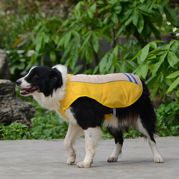 Petacc Outdoor Dog Cooler Harness Breathable Pet Cooling Coat Sun-proof Dog Jacket - Petacc