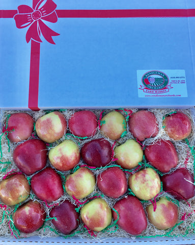 Apple Gift Box
