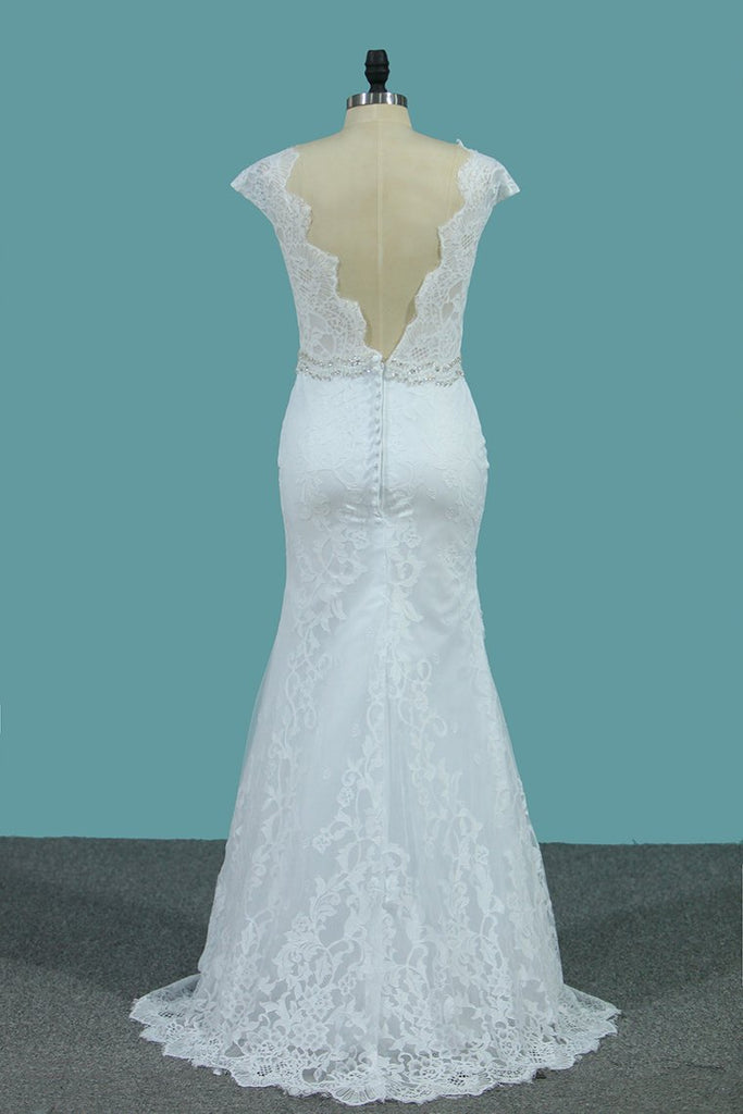 Lace Wedding Dresses Scoop With Beaded Waistline Covered Button Open Back