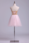 Collection Short/Mini Strapless A Line Beadings Organza
