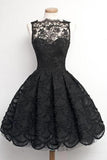 A-Line Scalloped-Edge Sleeveless Vintage Black Lace Appliques Prom Dresses JS869